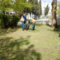 Уборка придомовой территории после покоса травы