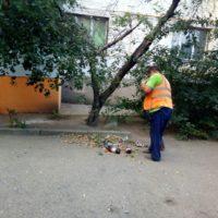 Ежедневная уборка придомовой территории